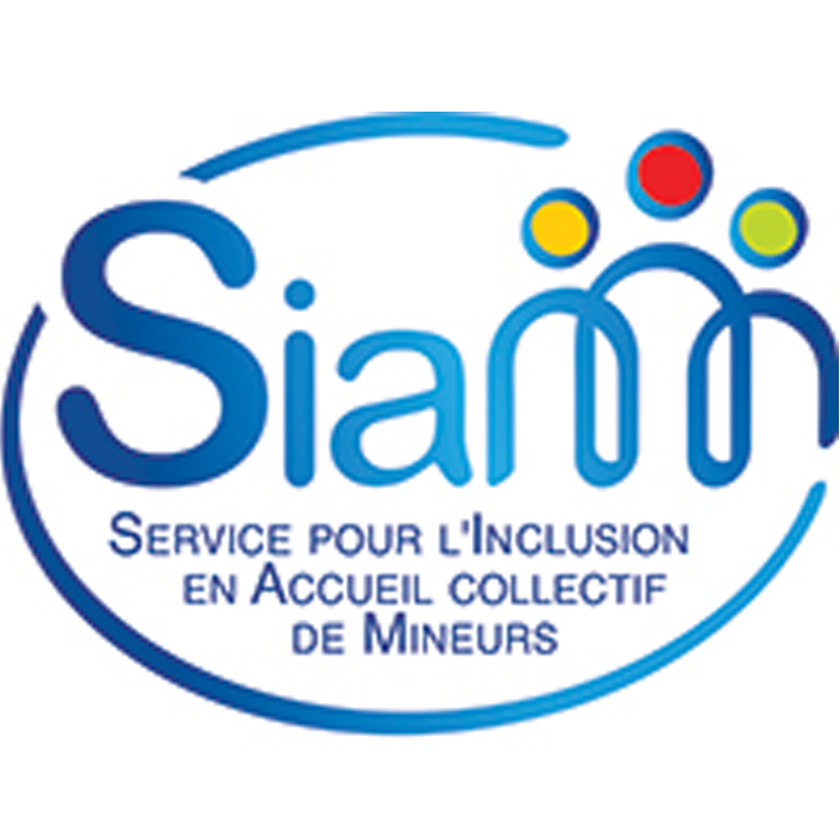 Service pour l'Inclusion en Accueil collectif de Mineurs