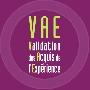 VAE Toulouse : logotype