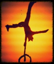L.G Circus